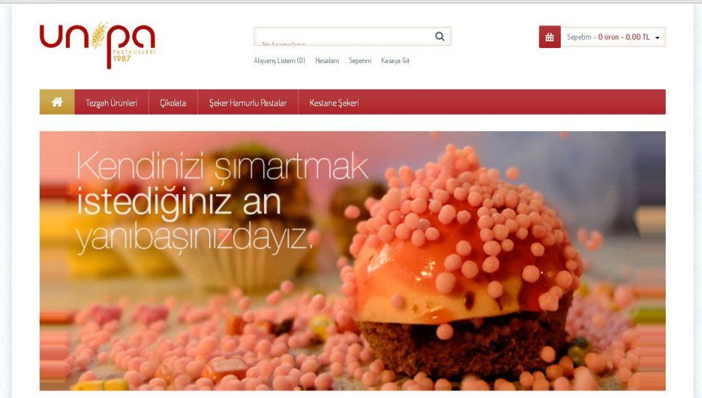 beser-ajans-referanslar-web-sayfasi-bursa-web-tasarim (73)